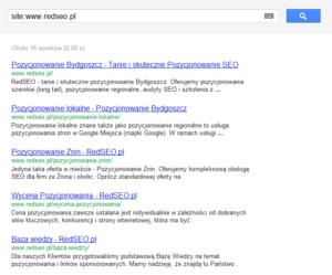 """Poprawny wynik polecenia Google """"site"""""""