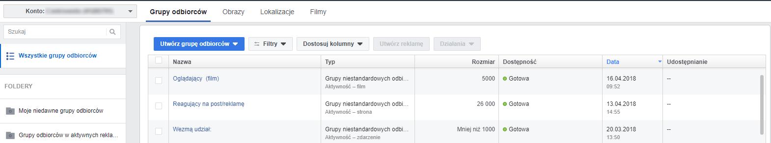 Grupy odbiorców Facebook